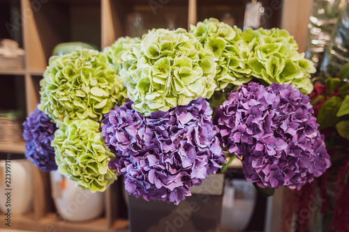 Huge bouquet of hydrangeas in a flower shop, lilac and green hydrangea