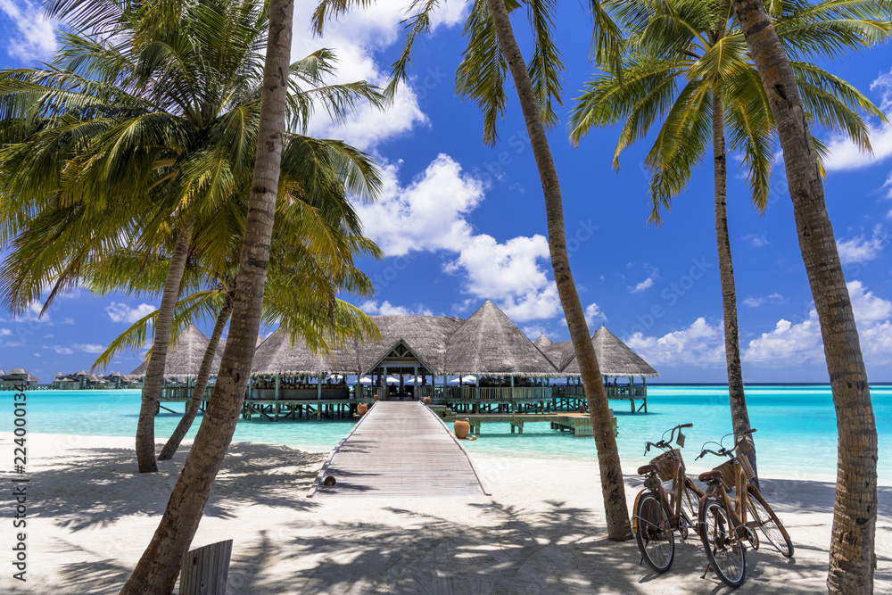 Fototapeta インド洋の美しいサンゴ礁の海