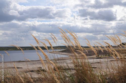 Fotobehang Kust himmel mit wolken und gewässer see küste strandhafer schilff horizont urlaub