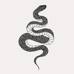 Ručno nacrtana ilustracija vintage zmije. Grafička skica za plakate, tetovaže, odjeću, dizajn majica, igle, zakrpe, značke, naljepnice.