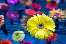 Outdoor Autumn Floral Decoration