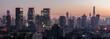 Shanghai Skyline - Panorama