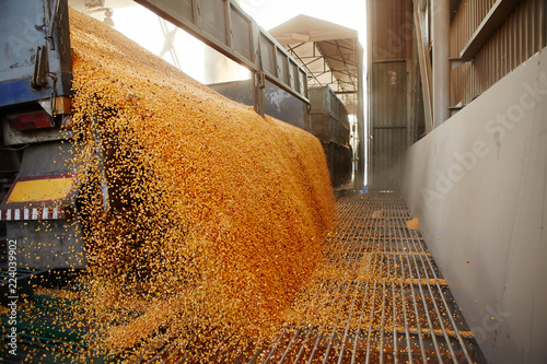 Fotografiet  Silo bag in a farm with fence and field
