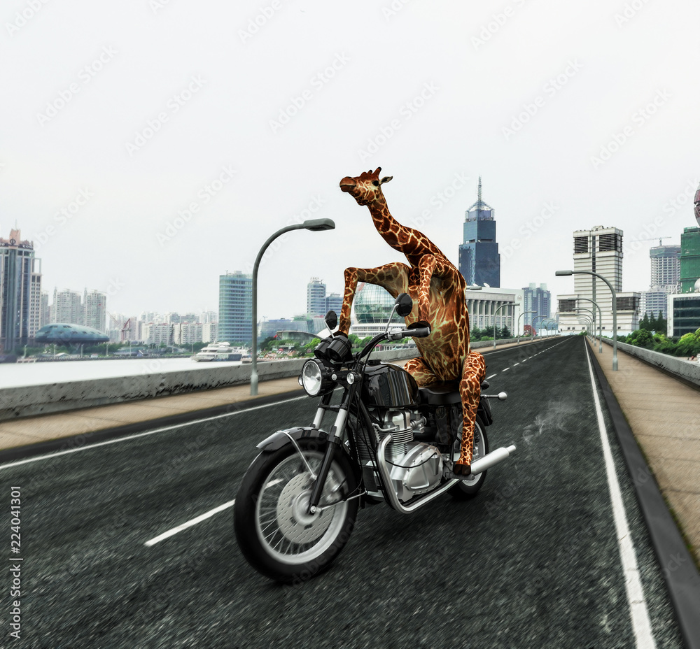 Giraffe fährt Motorrad aufs Land