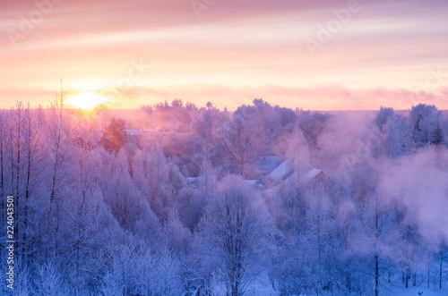 Deurstickers Lichtroze A beautiful frosty morning. Christmas morning. Beautiful dawn. Hoarfrost on the branches of trees