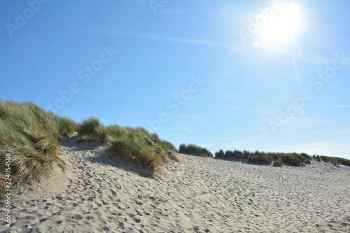 Spoed Foto op Canvas Noordzee Dünen Landschaft mit strahlender Sonne und blauem Himmel an der Nordseeküste in den Niederlanden