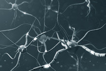 Gray Neurons With Glowing Fragments Over Gray