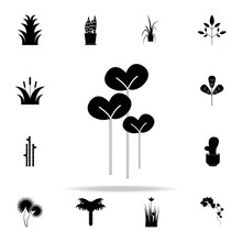 Watercress Salad Icon. Plants ...