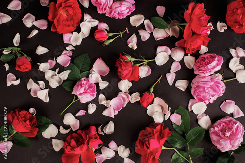 Gothic wallpaper. Postcard for valentine's day. Rose flower pattern on black background. Red summer flowers with green leaves. Pink roses for valentine's ...