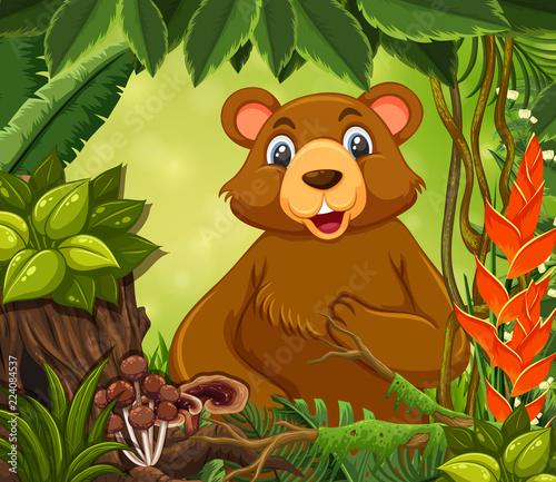 Fotobehang Beren A cute bear in forest