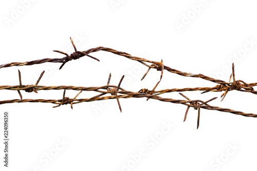 Fotografija  Rusty barbed wire isolated on white