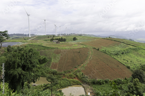 Fotobehang Wit Wind turbines generating electricity, landscape with step farming plantation agriculture.
