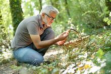 Man In Hood Picking Ceps Mushrooms