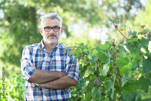 Carta da parati  Winemaker standing in vineyard