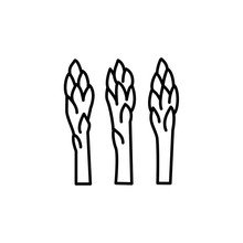 Black & White Vector Illustration Of Shoots Of Garden Asparagus. Line Icon Of Fresh Organic Sparrow Grass. Vegan & Vegetarian Food. Health Eating Ingredient. Isolated On White Background.