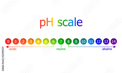 Photo Vector pH Scale Scheme, Rainbow Colors, Isolated on White Background Illustration