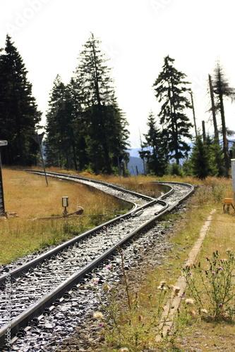 Weiche auf der Schmalspurbahn zum Brocken im Harz