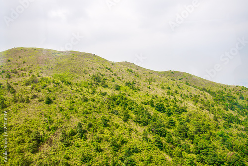Spoed Foto op Canvas Wit Green mountain nature background