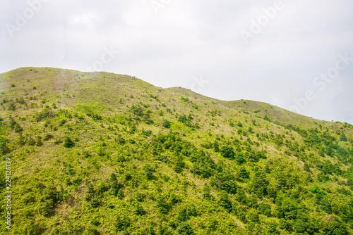 Fotobehang Wit Green mountain nature background