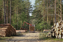 Timber Harvesting And Transpor...