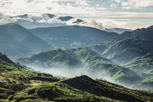 Morgenstimmung Costa Rica