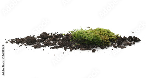 Fotografía  Green moss on soil, dirt pile, isolated on white background