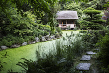 View Of Small Thatched Hut Among Trees In A Japanese Tea Garden With Small Path Along A Pond.