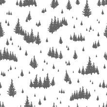 Seamless Pattern With Silhouettes Of Coniferous Trees. Backdrop With Evergreen Forest, Fir Woods Or Woodland. Hand Drawn Vector Illustration In Black And White Colors For Textile Print, Wallpaper.