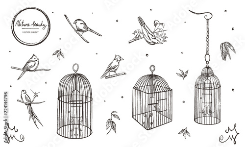 Photo  Vector illustration. Chalk style vector set. Birds and cages.