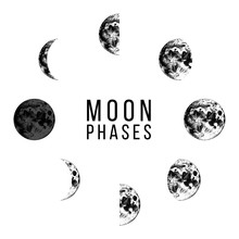 Moon Phases Icons - Whole Cycl...