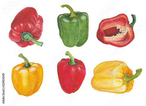 Yellow, green and red peppers in watercolor Fototapete