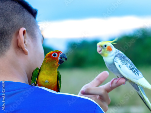Deurstickers Vogel macore bird Beautiful bird parrot playing with pet care on catching shoulder.