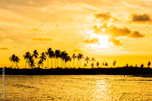 Scenic Sunset at Maracaipe Beach, near Porto de Galinhas Beach, Pernambuco, Brazil #224165306