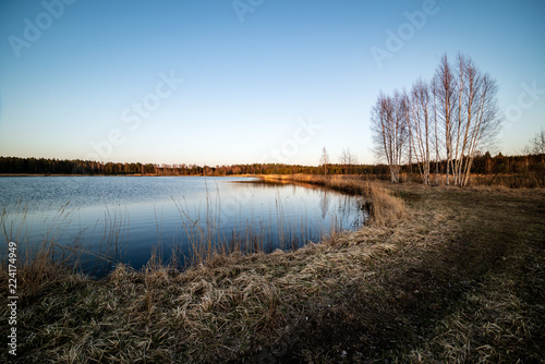 Staande foto Zwart lake shore with grass and trees in spring