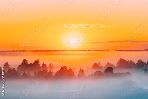 Poster Zonsondergang Sunrise Over Misty Landscape. Scenic View Of Foggy Morning Sky W