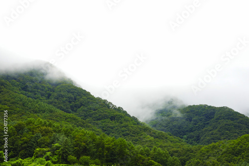 Foto op Canvas Wit Green mountain and rain cloud for natural background