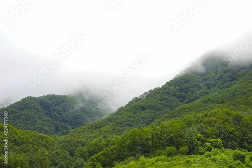 Fotobehang Wit Green mountain and rain cloud for natural background