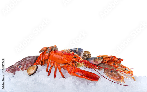Fresh tasty seafood served on crushed ice.