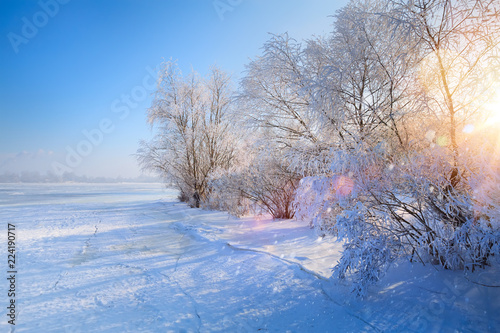 Spoed Foto op Canvas Blauwe hemel winter Landscape with Frozen lake and snowy trees