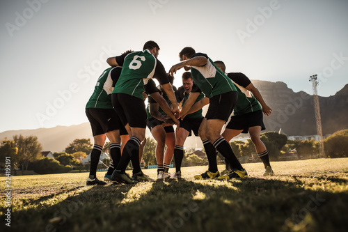 Fototapeta Rugby players cheering and celebrating win