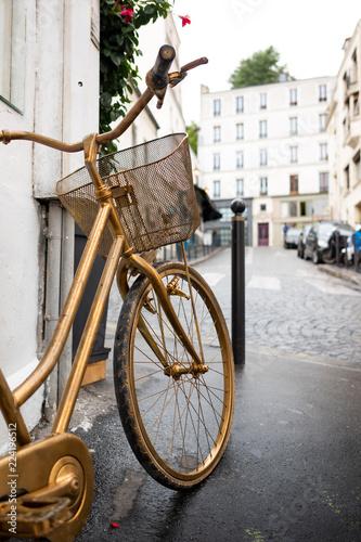 Fotografie, Obraz  vélo paris circuler transport rue parisien parisienne or panier vivre capitale f