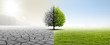 Leinwandbild Motiv Gesunde Umwelt