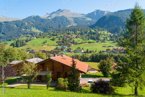 Tuinposter Pistache Landscape with mountain village in summer, Grindelwald, Switzerland