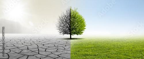 Valokuva  Gesunde Umwelt