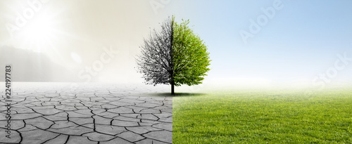 Fotografía  Gesunde Umwelt