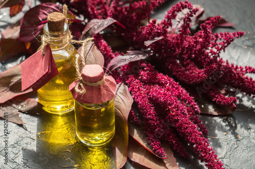 La pose en embrasure Condiment Bottles with amaranth oil and plants of amaranth