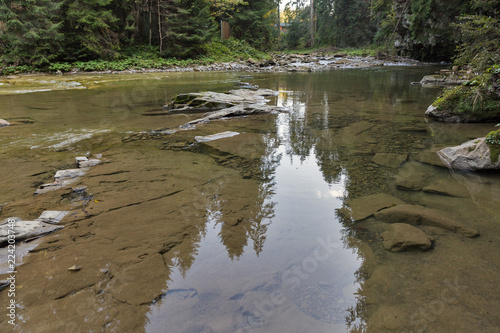 Mountain river Prutet landscape in Carpathians, Ukraine.