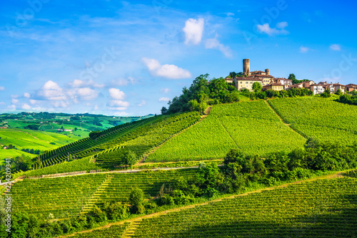 Fotografia  Langhe vineyards sunset panorama, Castiglione Falletto, Piedmont, Italy Europe