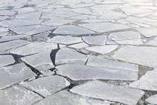 Pieces Of Ice In A Cold Sea At...