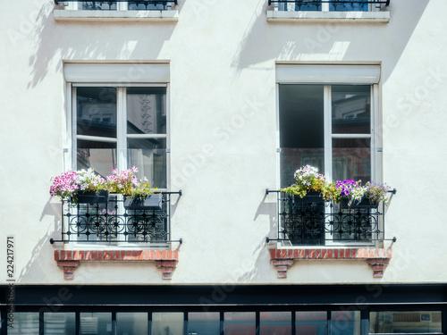 Fenêtre et fleur, Montmartre, Paris